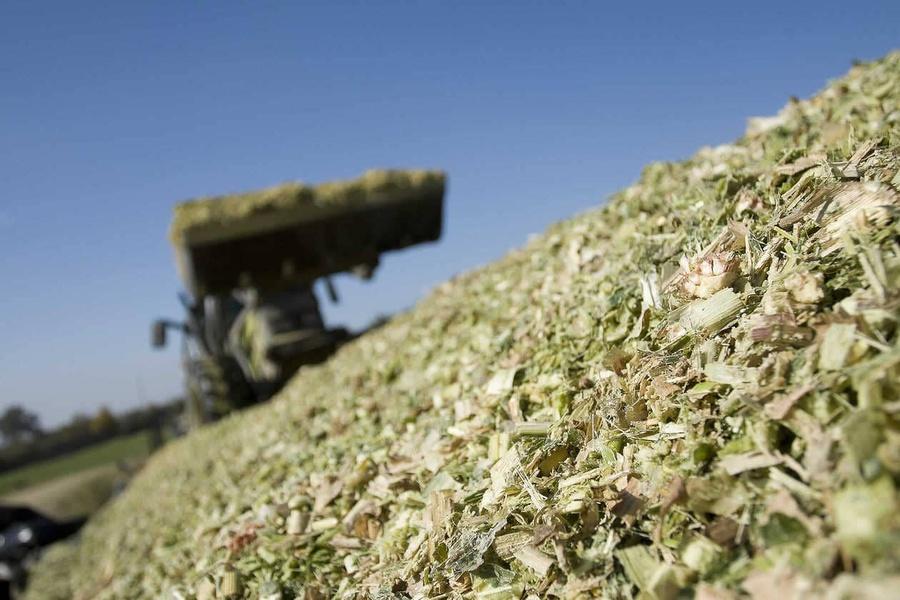 Confection du silo : comment réussir son hachage ?
