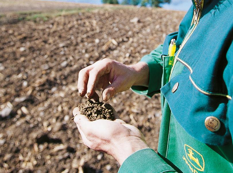 Quelle est la date de semis optimale de mes céréales d'hiver ?