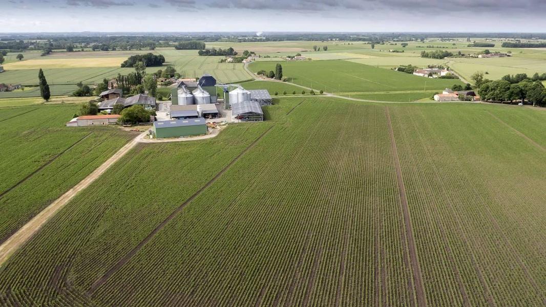 """LES FERMES """"LG PROGRÈS"""": L'irrigation du maïs c'est rentable"""