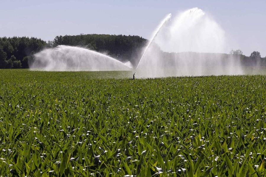 """"""" L'OAD LG Vision Irrigation a sécurisé mon irrigation """", Thierry"""