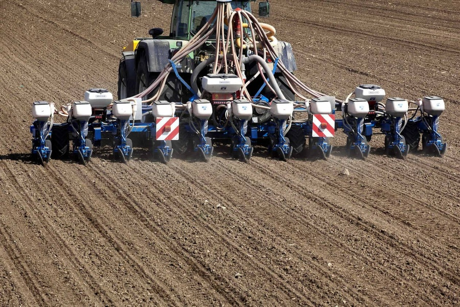 Quels sont les intérêts d'une date de semis précoce de son maïs ?