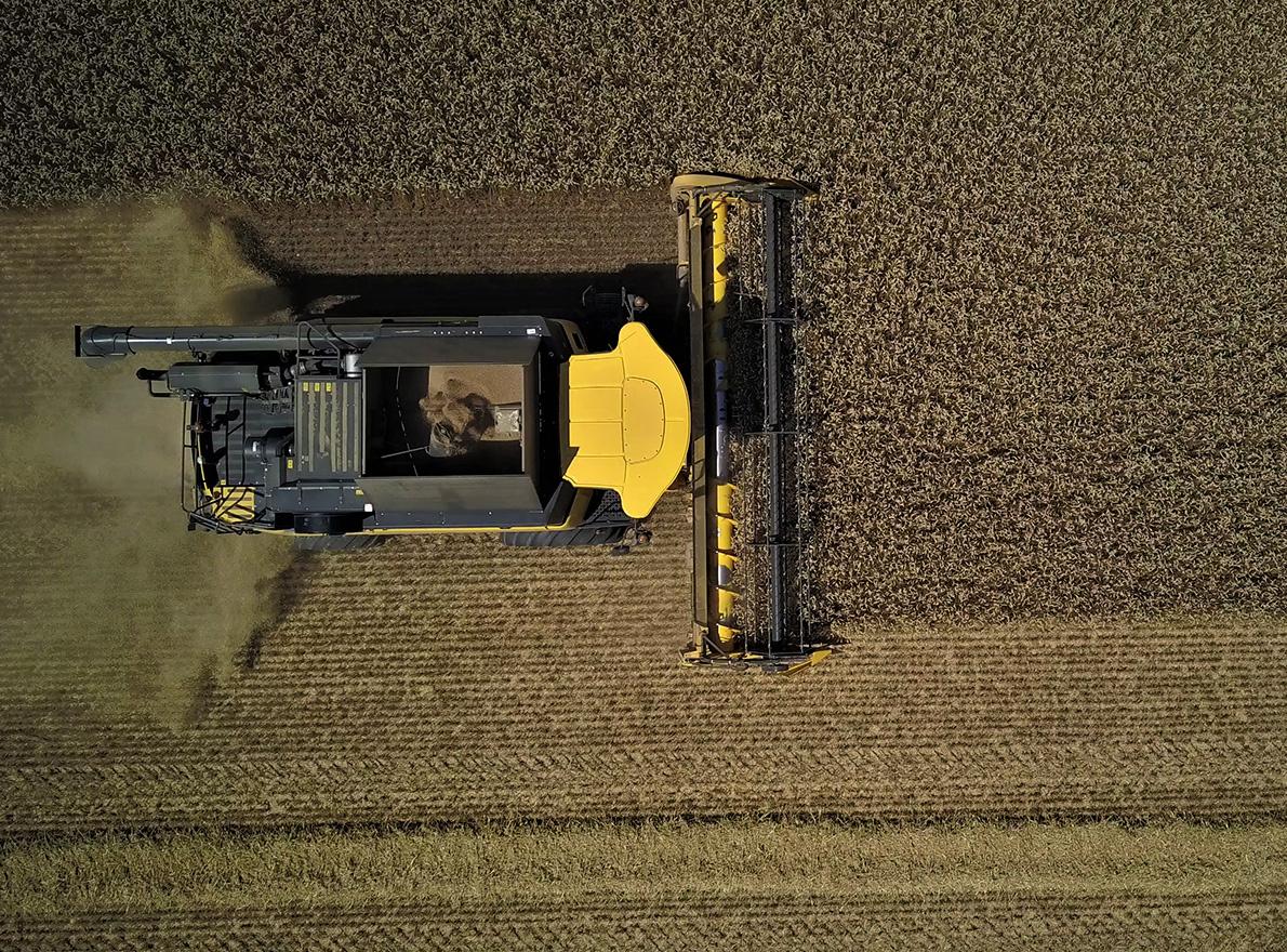 Récolter après de fortes pluies