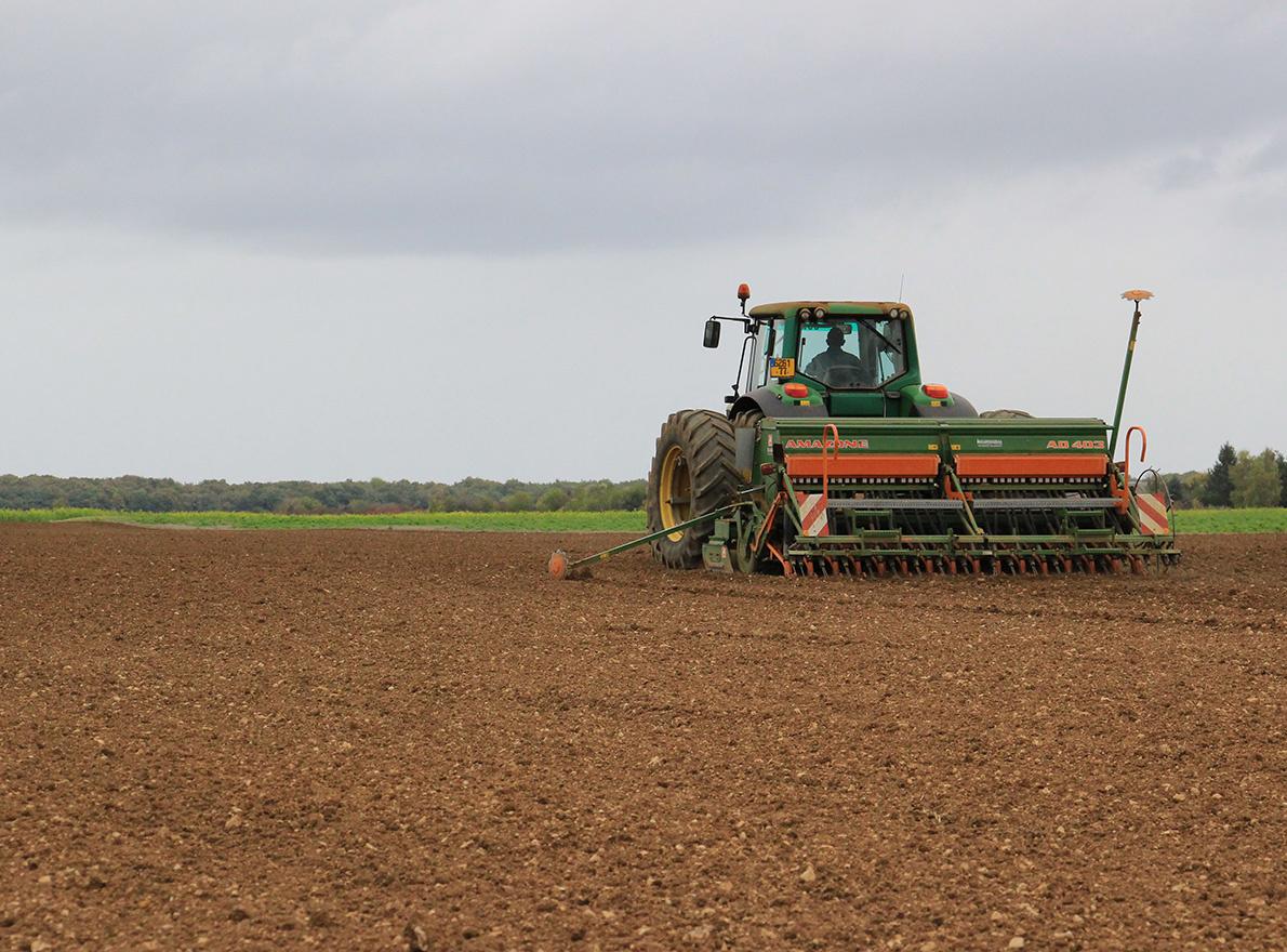 A quelle densité de semis implanter mes céréales ?
