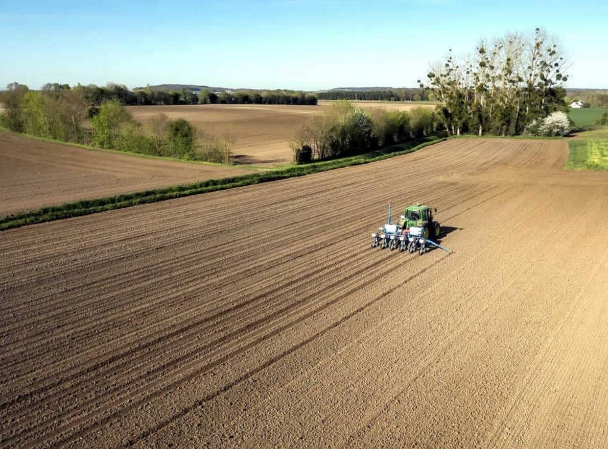 Date de semis maïs et tournesol à découvrir sur LG Vision Semis