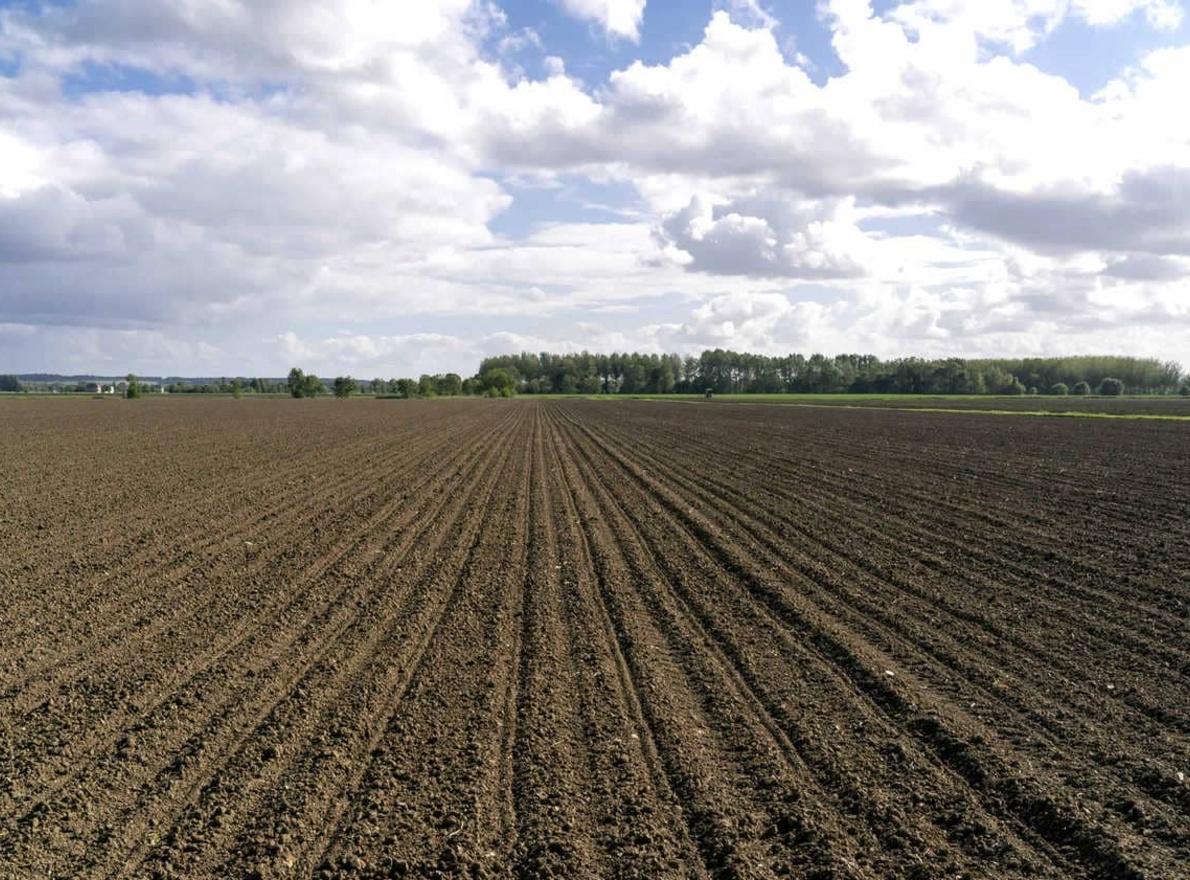 Comment préparer son sol au semis ?