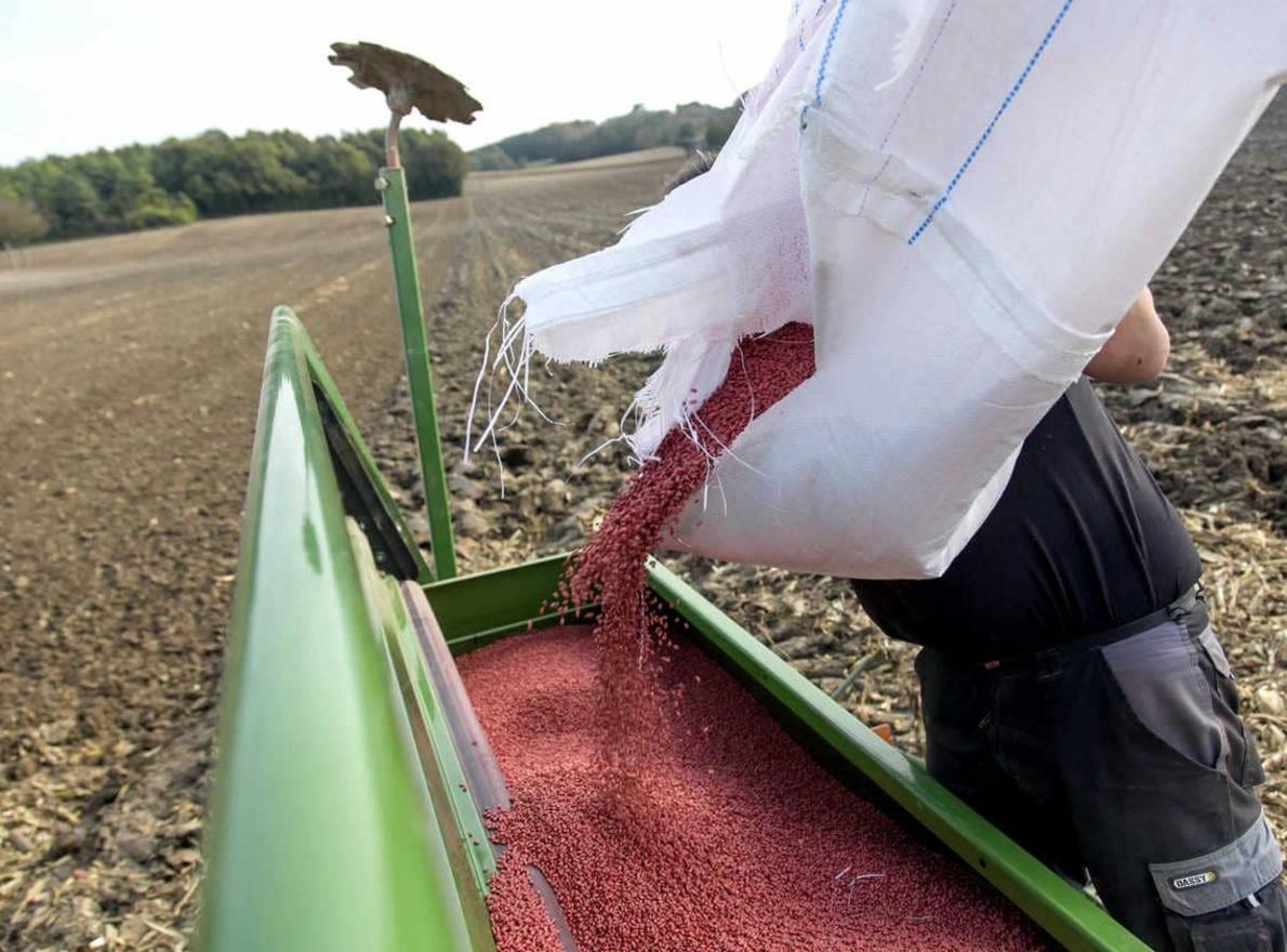 Comment calculer la quantité de semences à semer ?