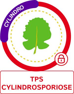 TPS cylindrosporiose