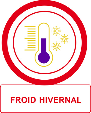 Froid hivernal