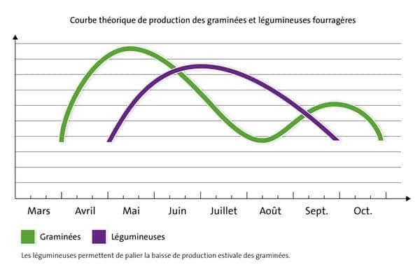 Production graminées et légumineuses
