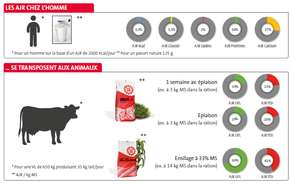 AJR hommes animaux Ration Gagnante