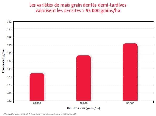 Densité semis maïs grain