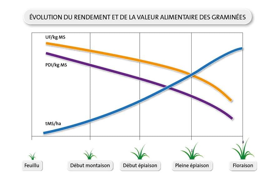 LG - Schéma évolution rendement et valeur alimentaire des graminées - Récolter ses prairies au bon stade