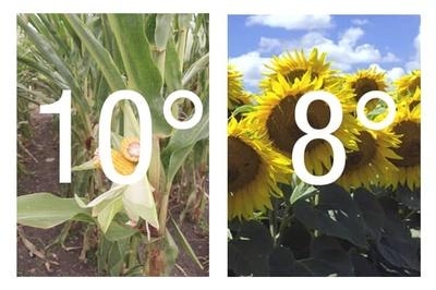 Temperature_ideale_semis_mais_tournesol