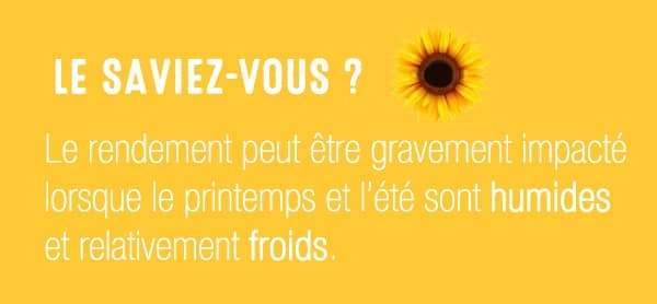 Le_saviez_vous Mildiou