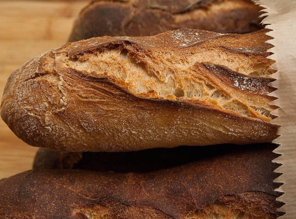 blé pour le pain