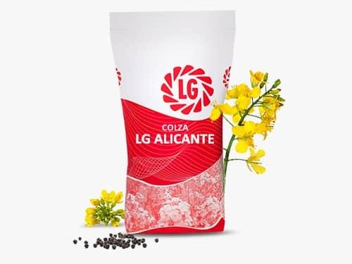 LG ALICANTE