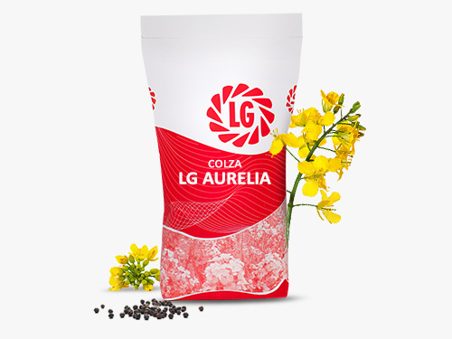 LG AURELIA